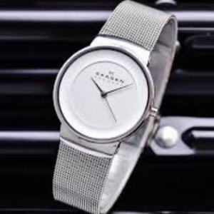 Đồng hồ Skagen – SKW2075